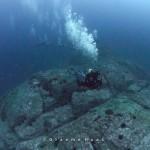 Diving at Windarra Banks 2 by Graeme Haas